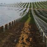 Conergy construye la tercera mayor planta del mundo con módulos de capa fina