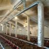 AireSolar pone en marcha un sistema jumbo solar en granja avícola