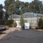 Una caldera de biomasa KWB da calor a un invernadero en Badajoz