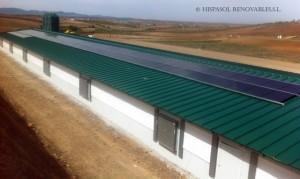 Granja de pollos con sistema fotovoltaico híbrido solar + gas