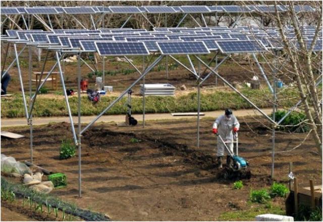 La energía solar como fuente de energías renovables para la agricultura