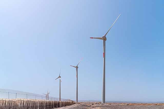 Ecoener pone en marcha en Gran Canaria el parque eólico La Caleta con un sistema pionero para preservar la avifauna local