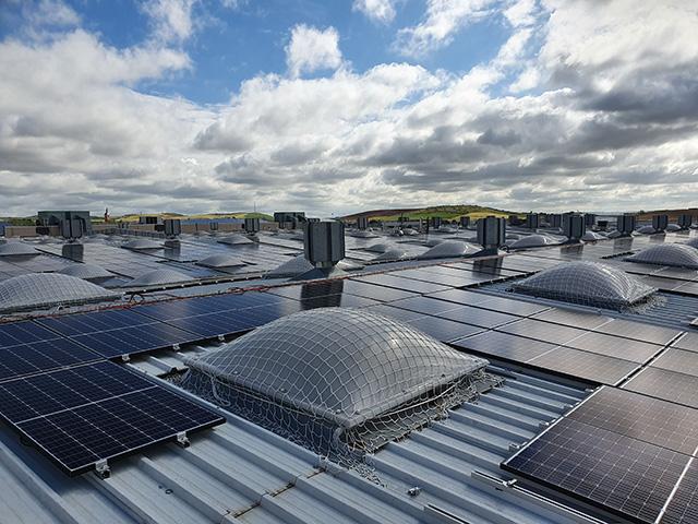 RISI impulsa su apuesta por la sostenibilidad con la instalación de más de 3.600 paneles fotovoltaicos