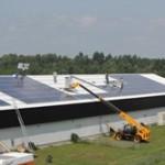 40.000 gallinas canadienses se benefician de la energía producida por los módulos fotovoltaicos de Conergy