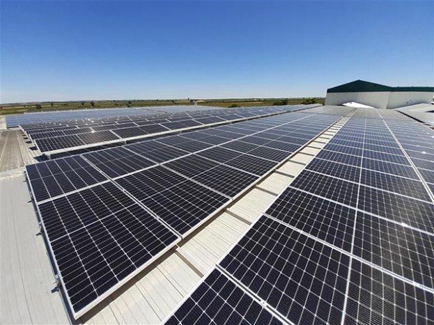 Alterna Energía construye dos instalaciones fotovoltaicas en Extremadura para Vegenat, empresa líder en la industria alimentaria